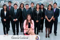 Grupo Comercial